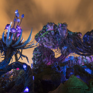 The dramatic daytime beauty of the land transforms to glow by night when bioluminescent flora and intricate nighttime experiences add a dreamlike quality to Pandora - The World of Avatar at Disney's Animal Kingdom. Pandora brings a variety of experiences to the park, including the family friendly Na'vi River Journey attraction, the thrilling Flight of Passage attraction, as well as new food, beverage and merchandise locations. DisneyÕs Animal Kingdom is one of four theme parks at Walt Disney World Resort in Lake Buena Vista, Fla. (David Roark, photographer)