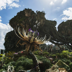 Pandora - The World of Avatar at Disney's Animal Kingdom brings a variety of experiences to the park, including the family friendly Na'vi River Journey attraction, the thrilling Flight of Passage attraction, as well as new food, beverage and merchandise locations. Disney's Animal Kingdom is one of four theme parks at Walt Disney World Resort in Lake Buena Vista, Fla. (Matt Stroshane, photographer)